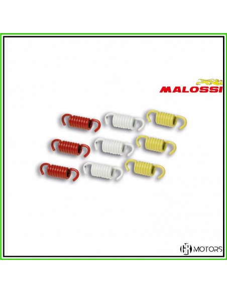 Kit molle Malossi Racing per frizione originale Honda SH 300 - Piaggio Beverly 300 - 2911326